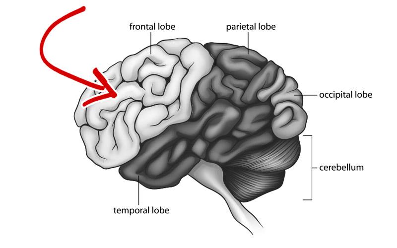 Brain Glitch